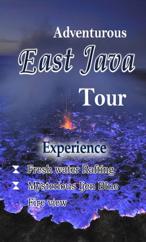 Surabaya around , Songa rafting , Bromo trip and Ijen Blue Fire 4D3N